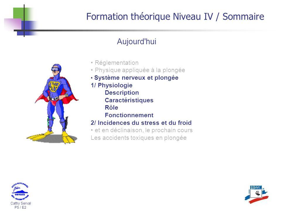 Cathy Serval P5 / E2 Formation théorique Niveau IV / Sommaire Réglementation Physique appliquée à la plongée Système nerveux et plongée 1/ Physiologie