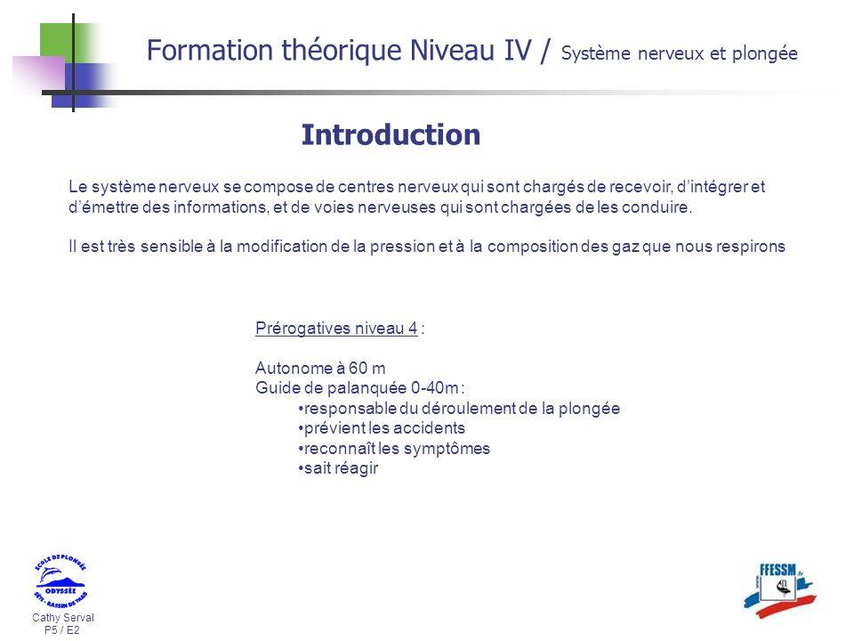 Cathy Serval P5 / E2 Formation théorique Niveau IV / Système nerveux et plongée Introduction Prérogatives niveau 4 : Autonome à 60 m Guide de palanqué