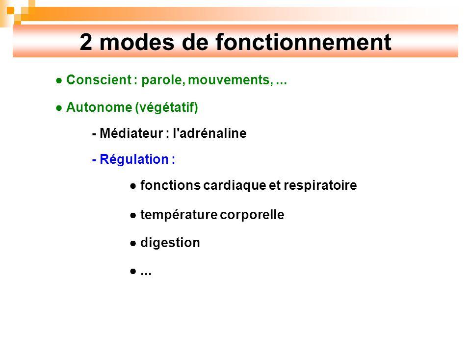 2 modes de fonctionnement Conscient : parole, mouvements,...