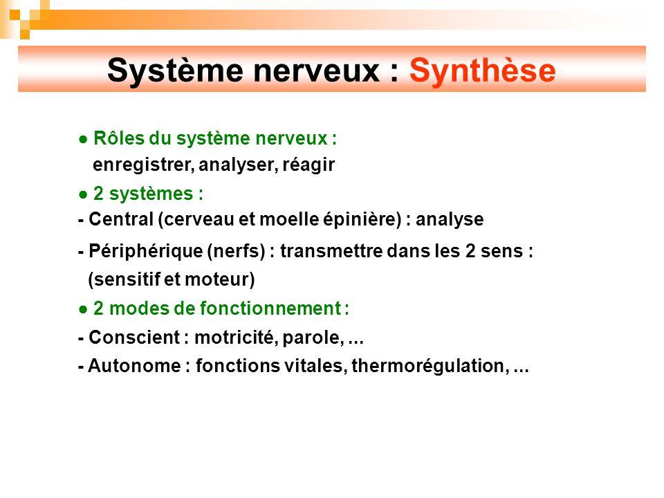 Système nerveux : Synthèse Rôles du système nerveux : enregistrer, analyser, réagir 2 systèmes : - Central (cerveau et moelle épinière) : analyse - Périphérique (nerfs) : transmettre dans les 2 sens : (sensitif et moteur) 2 modes de fonctionnement : - Conscient : motricité, parole,...