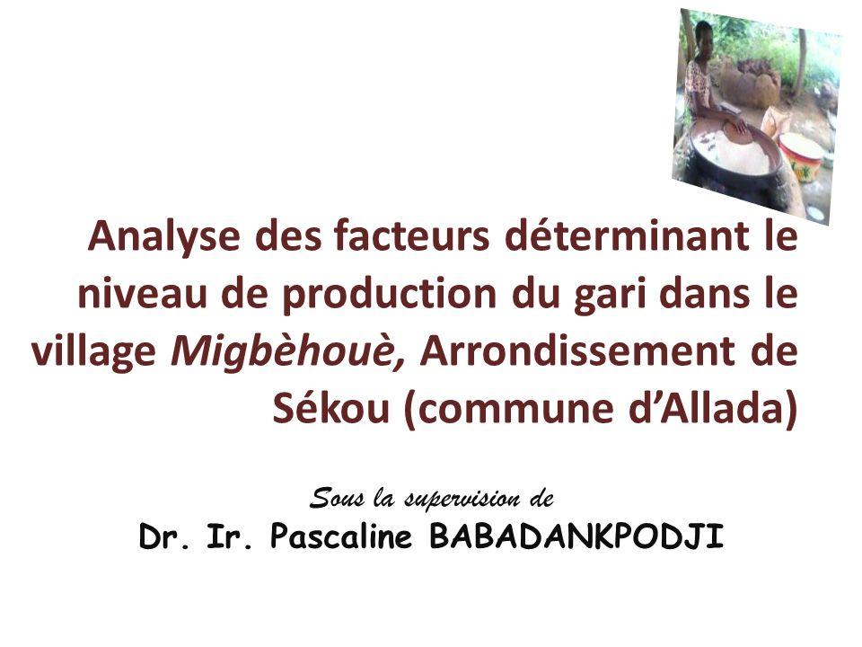 Analyse des facteurs déterminant le niveau de production du gari dans le village Migbèhouè, Arrondissement de Sékou (commune dAllada) Sous la supervis