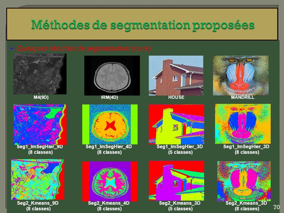 Quelques résultats de segmentation (suite) M4(9D) Seg1_ImSegHier_9D (8 classes) IRM(4D)HOUSEMANDRILL Seg1_ImSegHier_4D (8 classes) Seg1_ImSegHier_3D (
