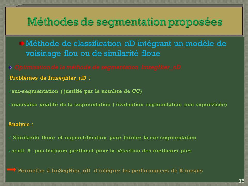 Méthode de classification nD intégrant un modèle de voisinage flou ou de similarité floue Optimisation de la méthode de segmentation ImsegHier_nD Prob