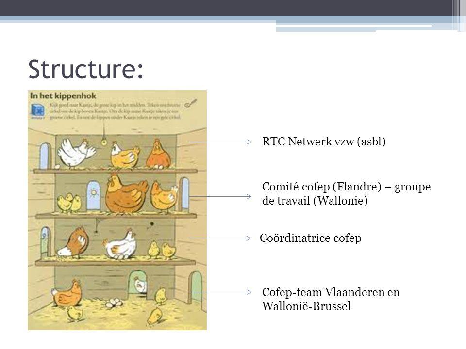 Structure: Comité cofep (Flandre) – groupe de travail (Wallonie) RTC Netwerk vzw (asbl) Cofep-team Vlaanderen en Wallonië-Brussel Coördinatrice cofep