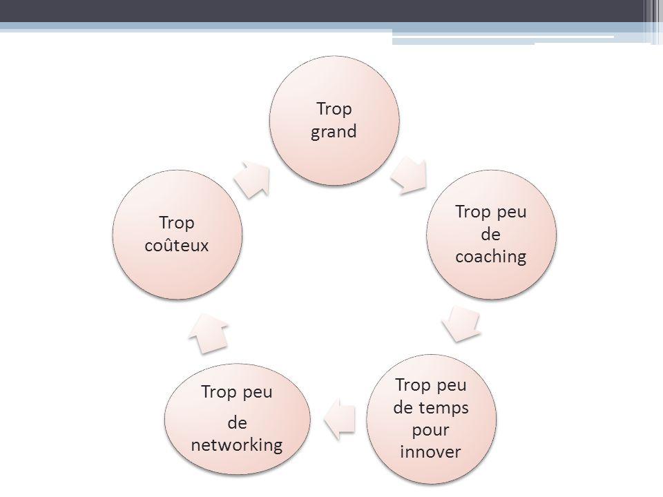 Trop grand Trop peu de coaching Trop peu de temps pour innover Trop peu de networking Trop coûteux