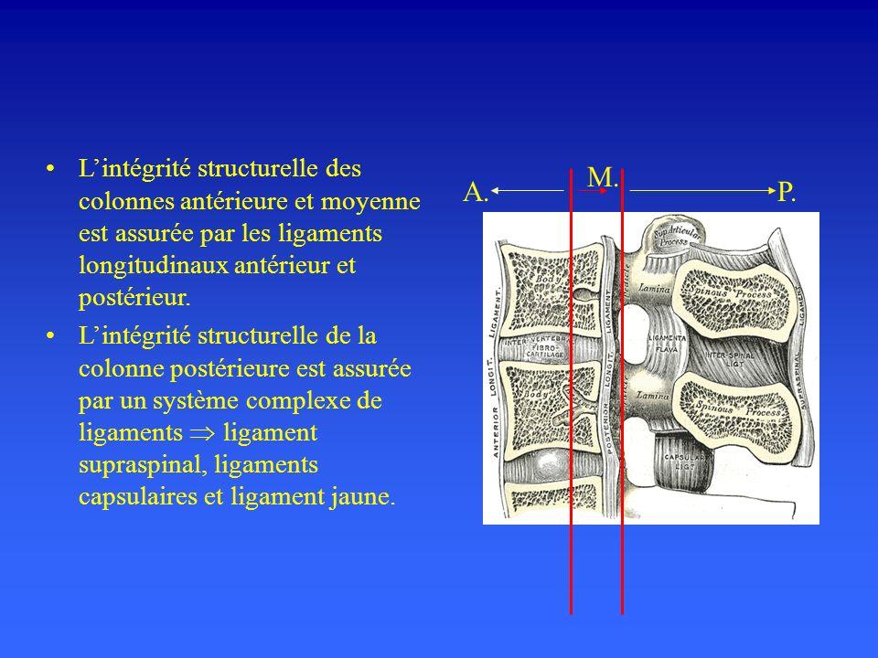 Lintégrité structurelle des colonnes antérieure et moyenne est assurée par les ligaments longitudinaux antérieur et postérieur.