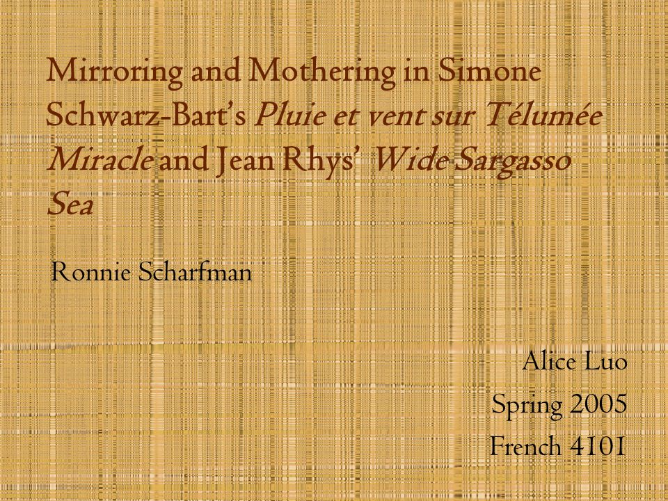 Mirroring and Mothering in Simone Schwarz-Barts Pluie et vent sur Télumée Miracle and Jean Rhys Wide Sargasso Sea Ronnie Scharfman Alice Luo Spring 20
