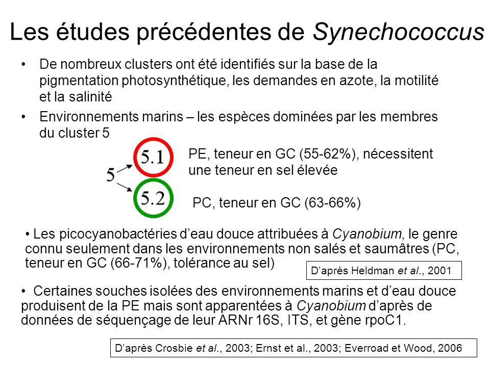 Les études précédentes de Synechococcus face à cette étude Cette étude a examiné les communautés de picocyanobactéries en créeant des banques de clones de séquences partielles dARNr 16S-ITS, dopéron cpeBA (codant pour PE) et dopéron cpcBA (codant pour PC) Les études précédentes ont montré que la phylogénie de cpcBA de picocyanobactéries deau douce corréspond à leur pigmentation.