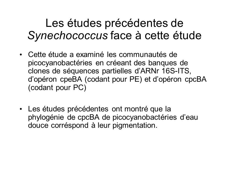 Les études précédentes de Synechococcus face à cette étude Cette étude a examiné les communautés de picocyanobactéries en créeant des banques de clone