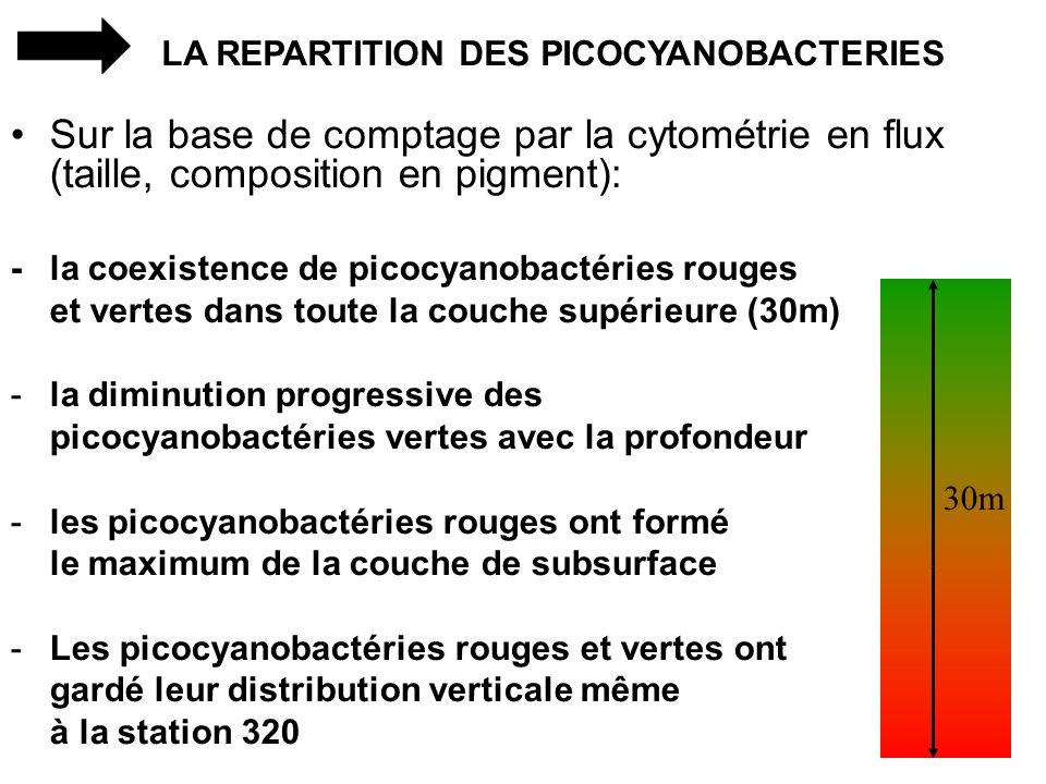LA REPARTITION DES PICOCYANOBACTERIES Sur la base de comptage par la cytométrie en flux (taille, composition en pigment): - la coexistence de picocyan