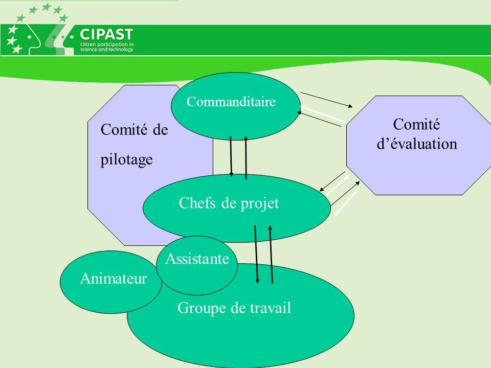 Groupe de travail Commanditaire Chefs de projet Animateur Comité de pilotage Comité dévaluation Assistante