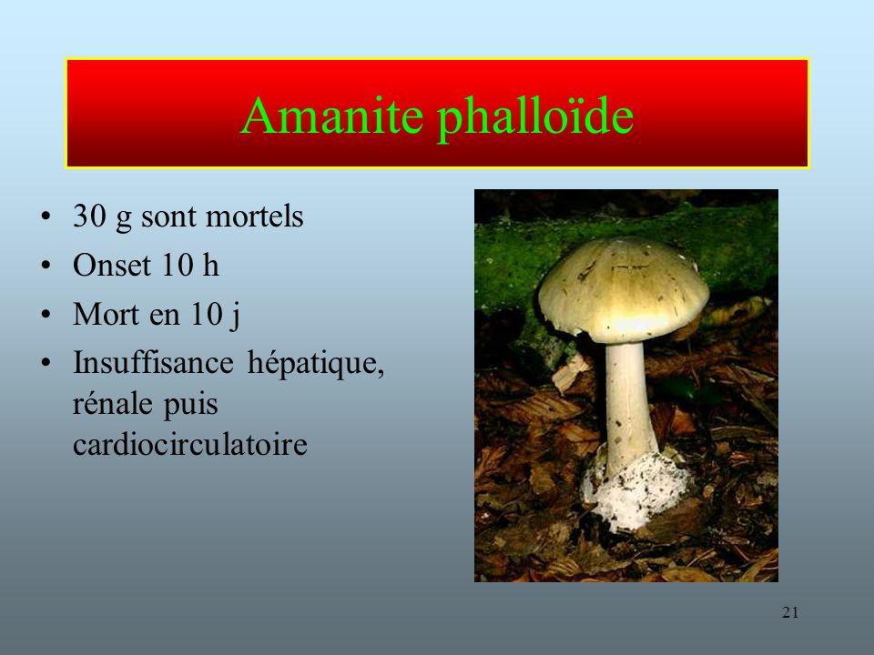 21 Amanite phalloïde 30 g sont mortels Onset 10 h Mort en 10 j Insuffisance hépatique, rénale puis cardiocirculatoire