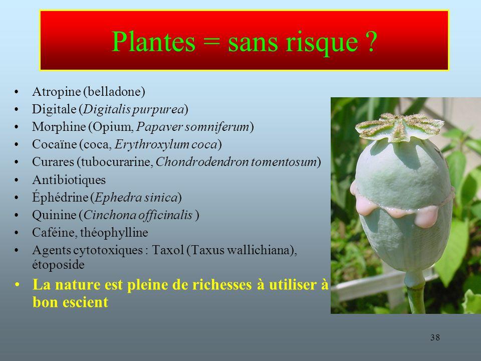 38 Plantes = sans risque .