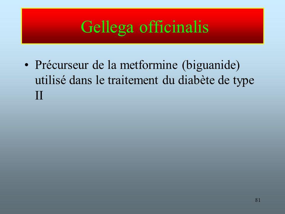 81 Gellega officinalis Précurseur de la metformine (biguanide) utilisé dans le traitement du diabète de type II