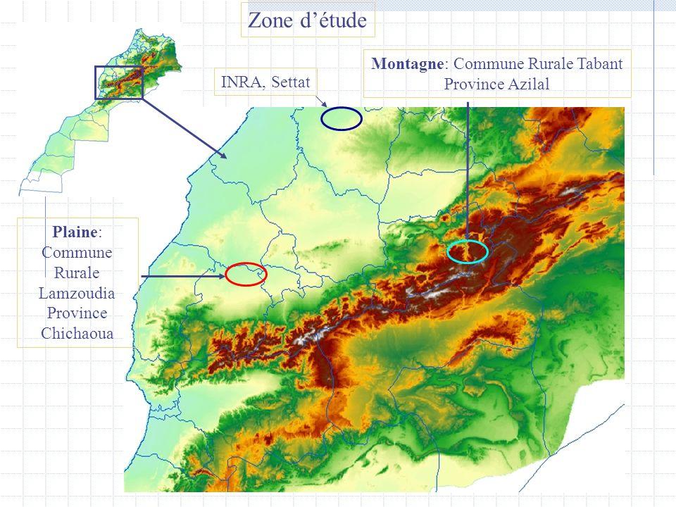Zone détude Plaine: Commune Rurale Lamzoudia Province Chichaoua Montagne: Commune Rurale Tabant Province Azilal INRA, Settat