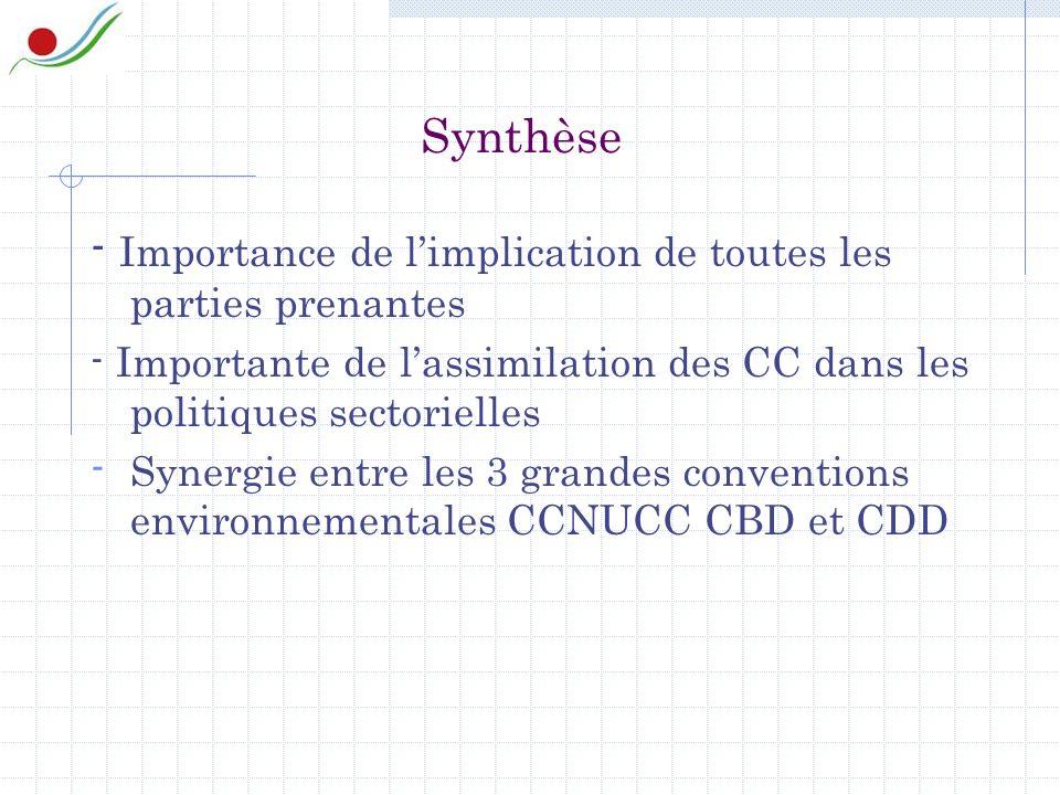 Synthèse - Importance de limplication de toutes les parties prenantes - Importante de lassimilation des CC dans les politiques sectorielles - Synergie entre les 3 grandes conventions environnementales CCNUCC CBD et CDD