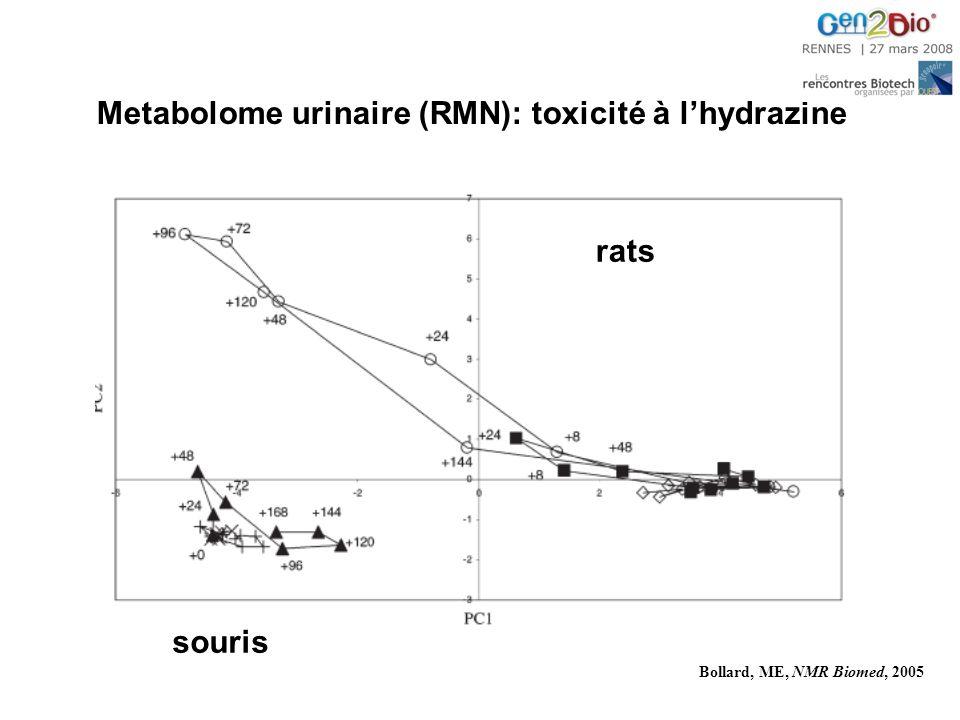 Metabolome urinaire (RMN): toxicité à lhydrazine rats souris Bollard, ME, NMR Biomed, 2005