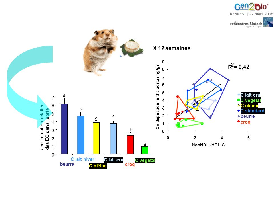X 12 semaines 0 1 2 3 4 5 6 7 accumulation relative des EC dans laorte C végétal a croq b C lait cru c C oléine c C lait hiver c beurre d