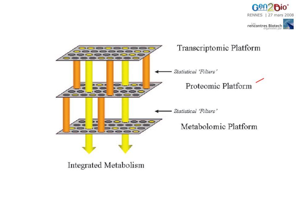 « La mesure quantitative de la réponse métabolique dynamique multiparamétrique des organismes vivants à des stimuli pathophysiologiques ou à des modifications génétiques » metabo L omique et métabo N omique Empreintes métaboliques basées sur des déterminations exhaustives Description/désignation des changements métaboliques