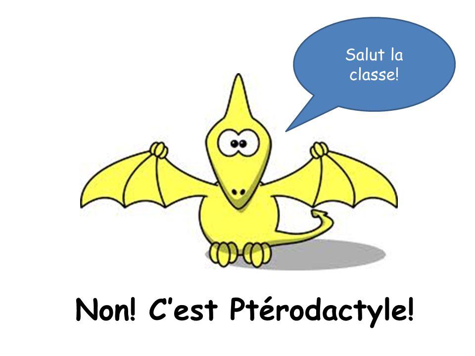 Non! Cest Ptérodactyle! Salut la classe!