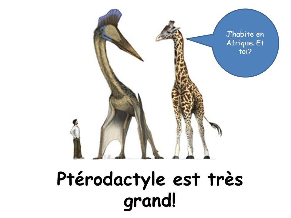 Ptérodactyle est très grand! Jhabite en Afrique. Et toi?