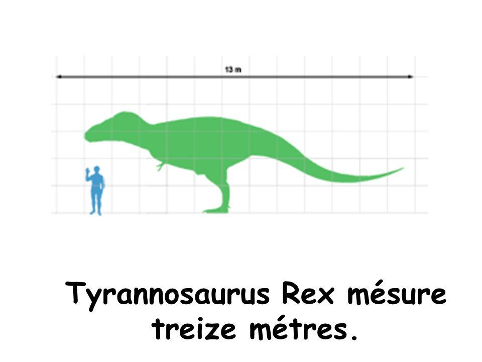 Tyrannosaurus Rex mésure treize métres.