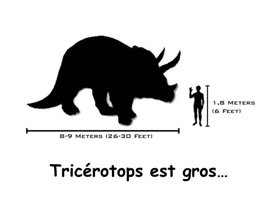 Tricérotops est gros…