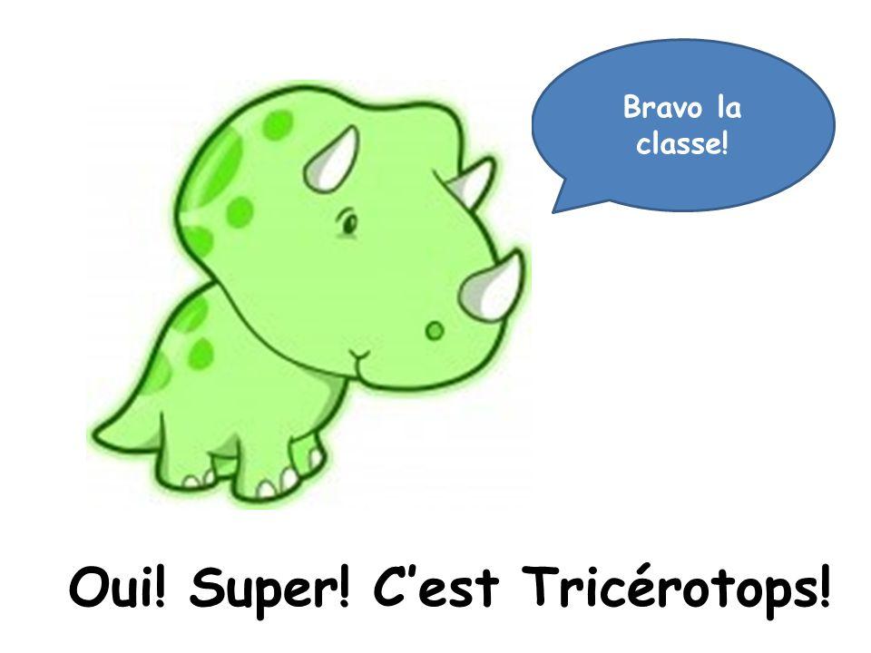Oui! Super! Cest Tricérotops! Bravo la classe!