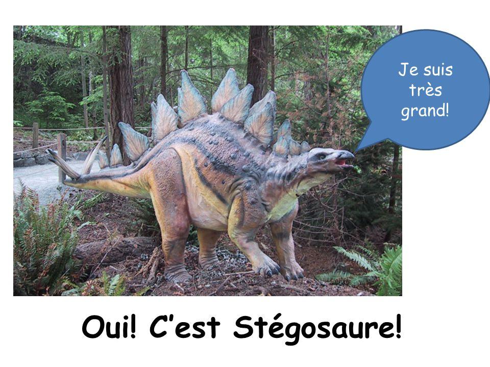 Oui! Cest Stégosaure! Je suis très grand!
