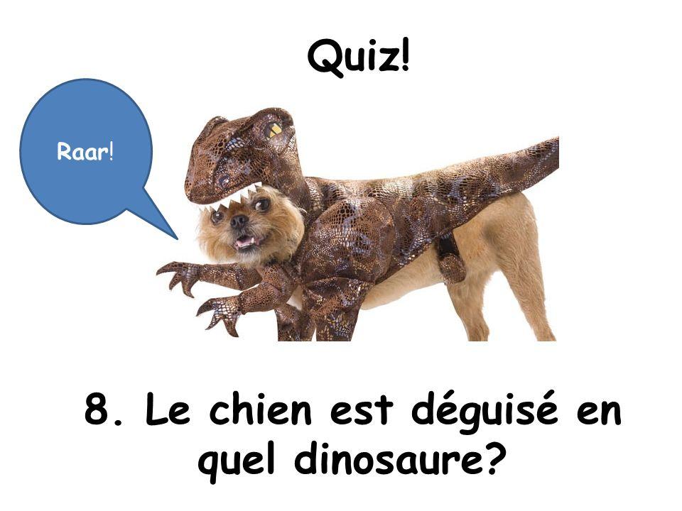Quiz! 8. Le chien est déguisé en quel dinosaure? Raar!