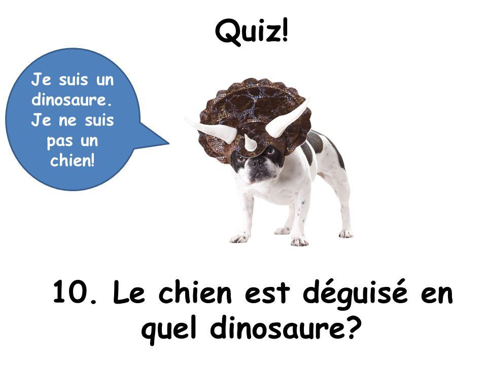 Quiz! 10. Le chien est déguisé en quel dinosaure? Je suis un dinosaure. Je ne suis pas un chien!