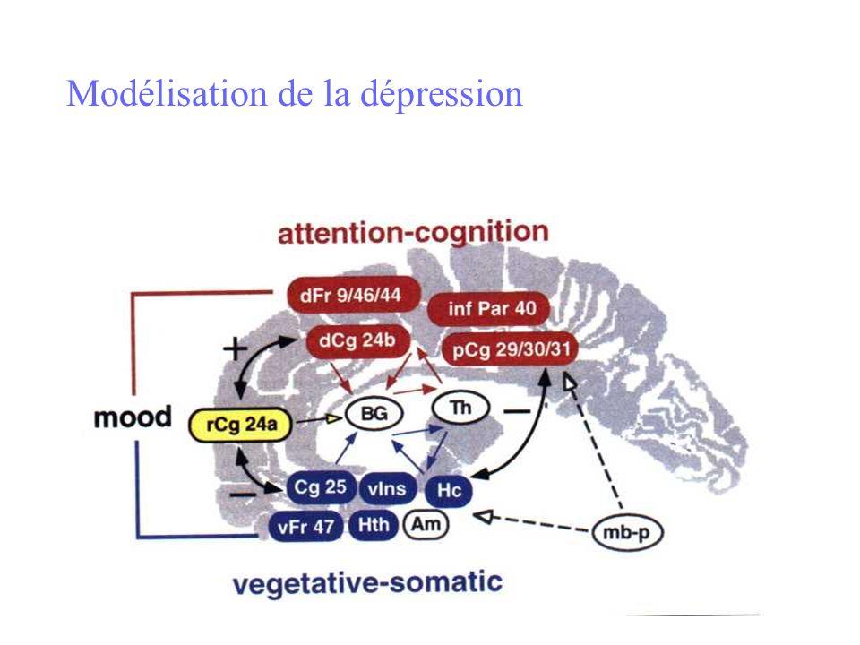 Modélisation de la dépression