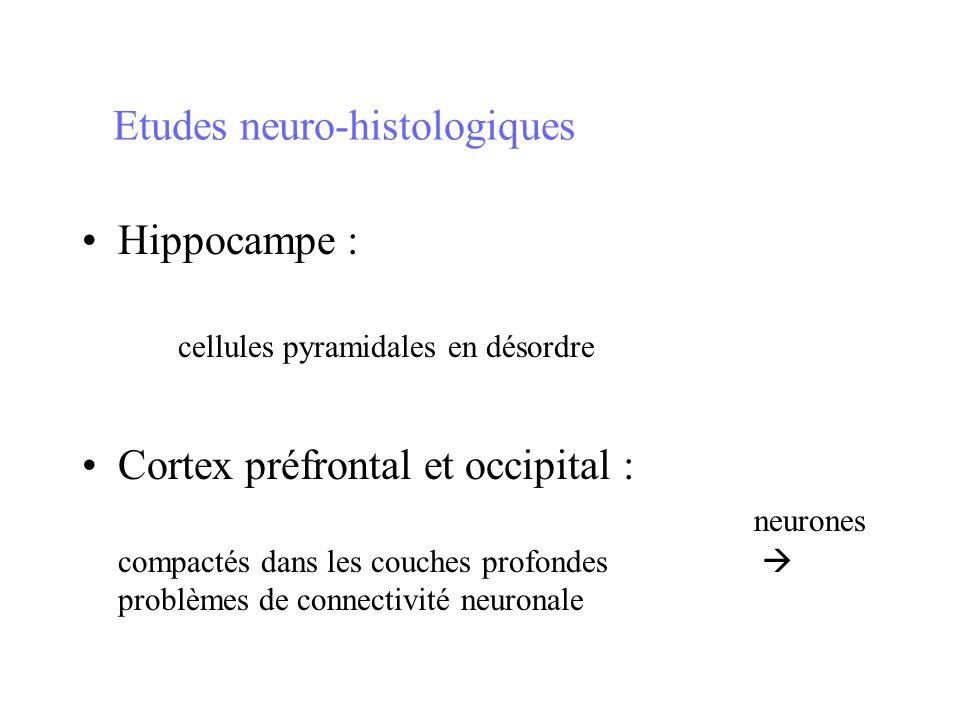 Etudes neuro-histologiques Hippocampe : cellules pyramidales en désordre Cortex préfrontal et occipital : neurones compactés dans les couches profonde