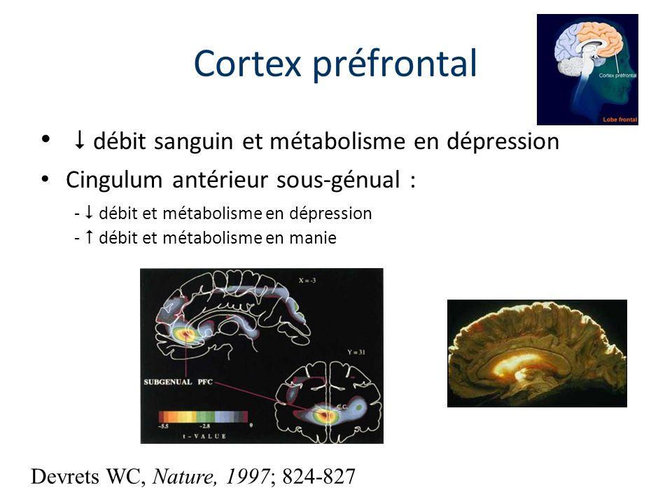 débit sanguin et métabolisme en dépression Cingulum antérieur sous-génual : - débit et métabolisme en dépression - débit et métabolisme en manie Corte