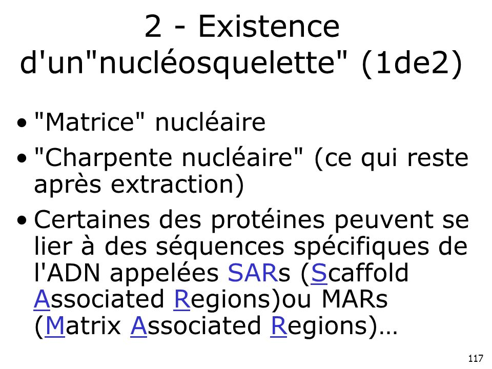 117 2 - Existence d un nucléosquelette (1de2) Matrice nucléaire Charpente nucléaire (ce qui reste après extraction) Certaines des protéines peuvent se lier à des séquences spécifiques de l ADN appelées SARs (Scaffold Associated Regions)ou MARs (Matrix Associated Regions)…