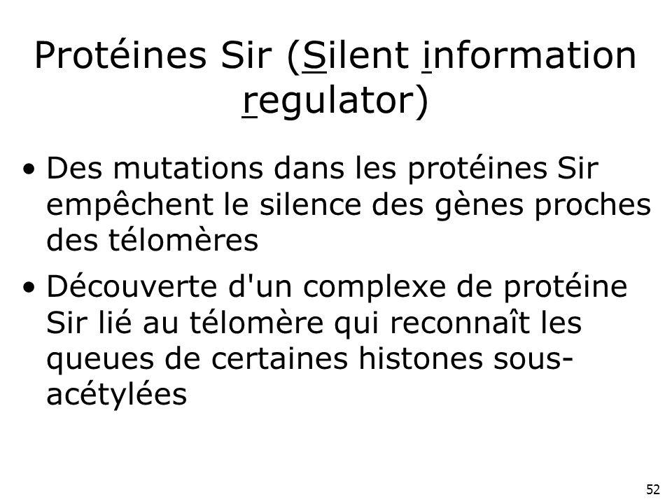 52 Protéines Sir (Silent information regulator) Des mutations dans les protéines Sir empêchent le silence des gènes proches des télomères Découverte d