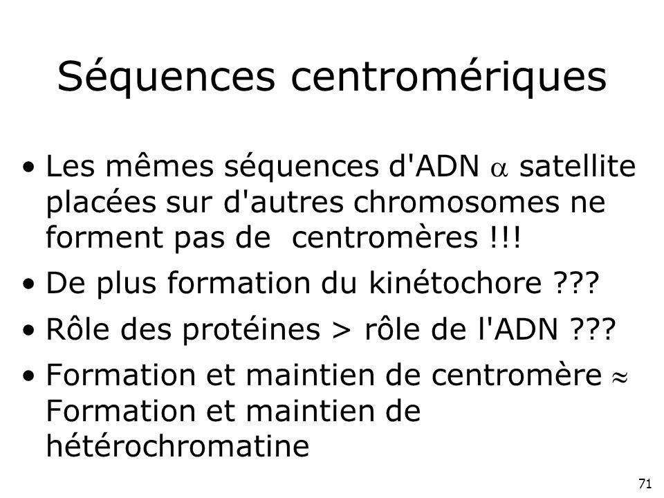 71 Séquences centromériques Les mêmes séquences d'ADN satellite placées sur d'autres chromosomes ne forment pas de centromères !!! De plus formation d