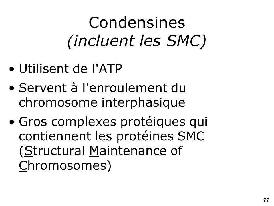 99 Condensines (incluent les SMC) Utilisent de l'ATP Servent à l'enroulement du chromosome interphasique Gros complexes protéiques qui contiennent les