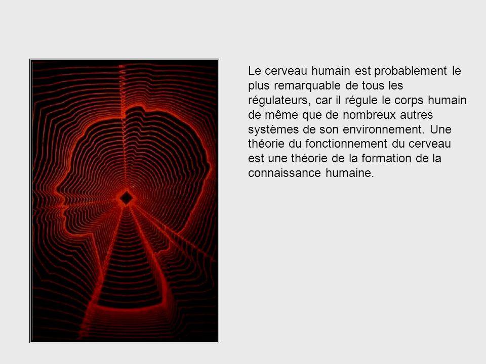 Cybernétique = Régulation des Systèmes Pourquoi lœuvre de McCulloch est-elle si importante pour les cybernéticiens ? Souvenez-vous que la cybernétique