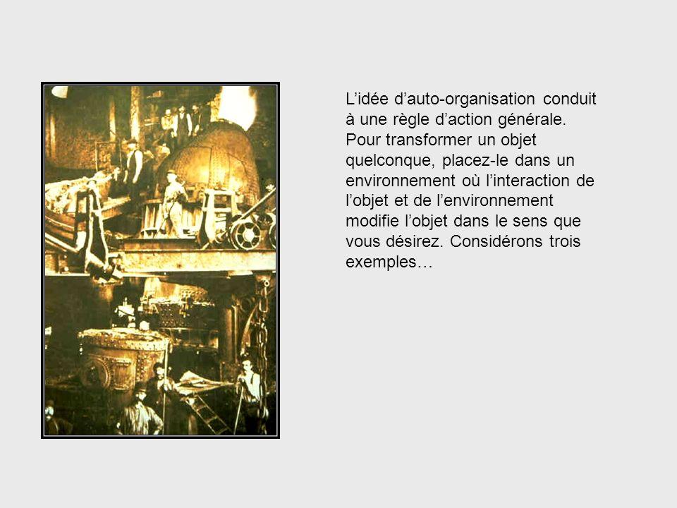 Lidée dauto-organisation conduit à une règle daction générale. Pour transformer un objet quelconque, placez-le dans un environnement où linteraction d