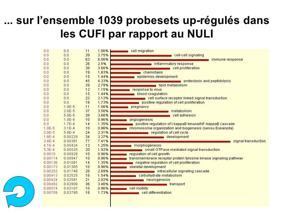 ... sur lensemble 1039 probesets up-régulés dans les CUFI par rapport au NULI