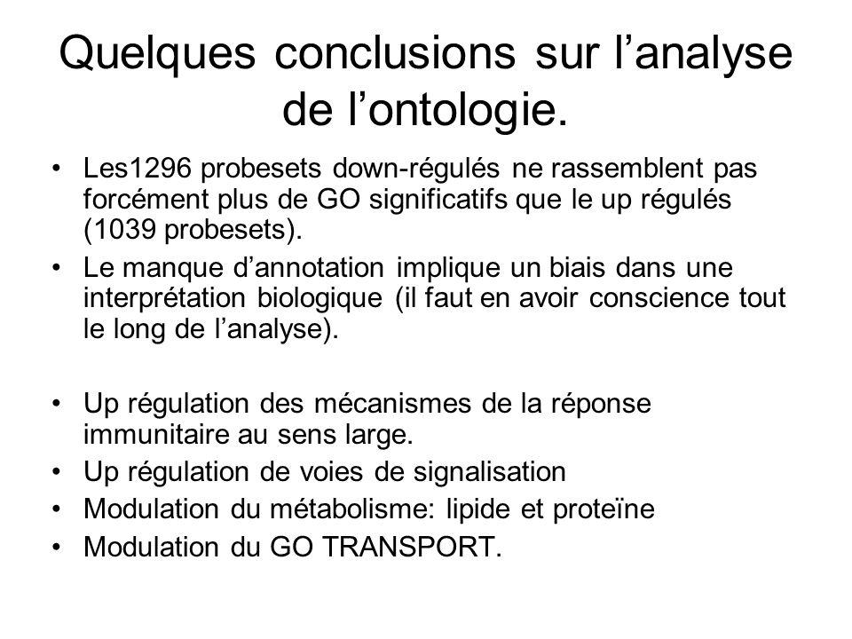 Quelques conclusions sur lanalyse de lontologie.