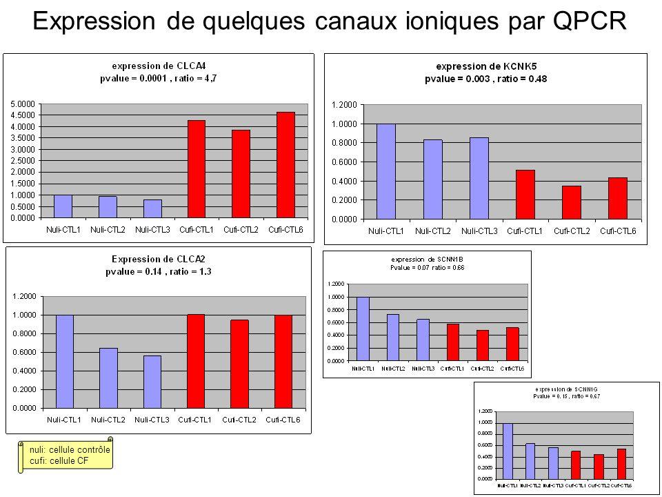 Expression de quelques canaux ioniques par QPCR nuli: cellule contrôle cufi: cellule CF