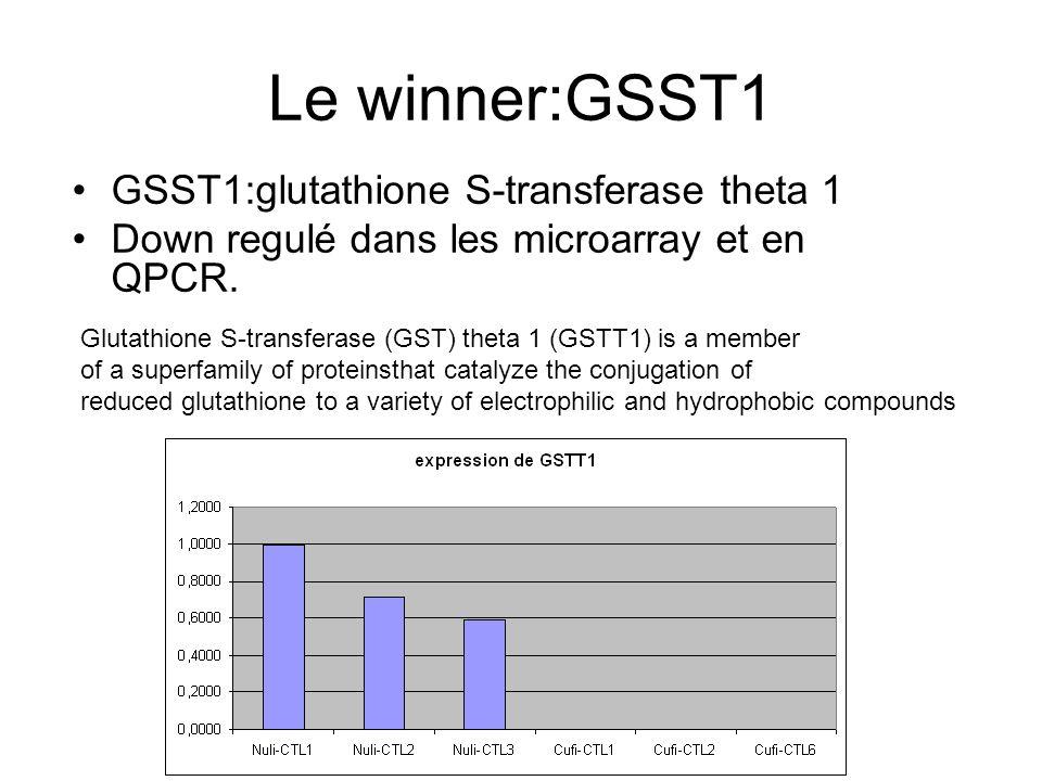 Le winner:GSST1 GSST1:glutathione S-transferase theta 1 Down regulé dans les microarray et en QPCR.