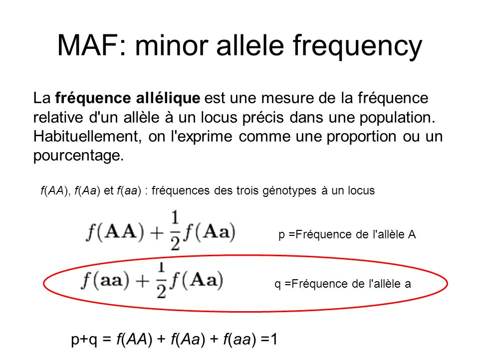 MAF: minor allele frequency La fréquence allélique est une mesure de la fréquence relative d'un allèle à un locus précis dans une population. Habituel