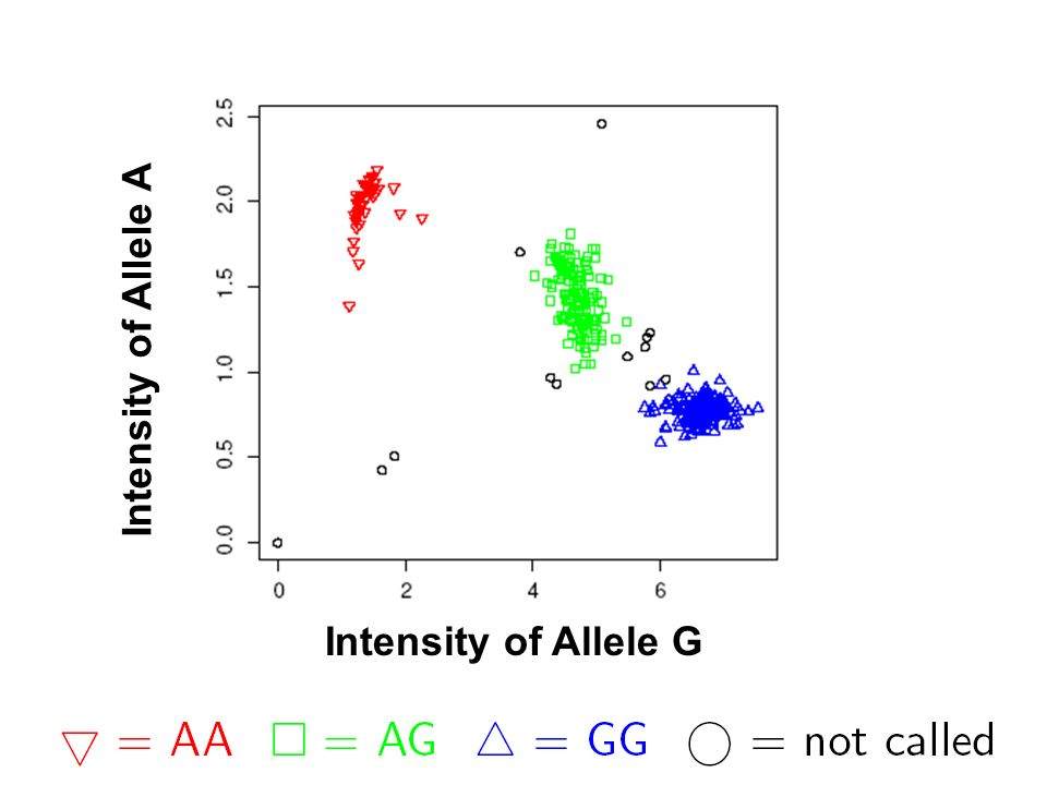 Intensity of Allele G Intensity of Allele A
