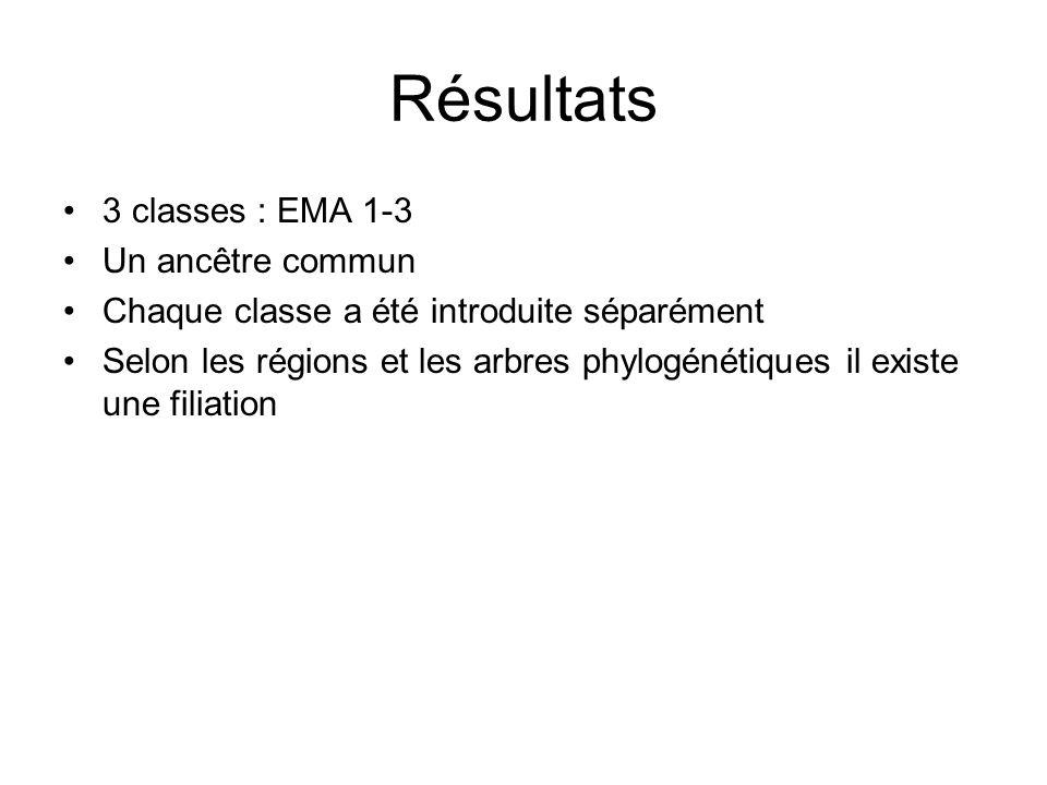 Résultats 3 classes : EMA 1-3 Un ancêtre commun Chaque classe a été introduite séparément Selon les régions et les arbres phylogénétiques il existe un