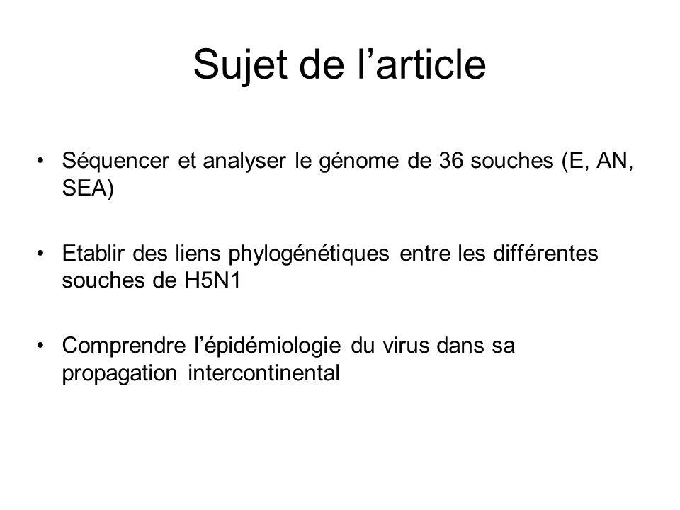 Sujet de larticle Séquencer et analyser le génome de 36 souches (E, AN, SEA) Etablir des liens phylogénétiques entre les différentes souches de H5N1 C