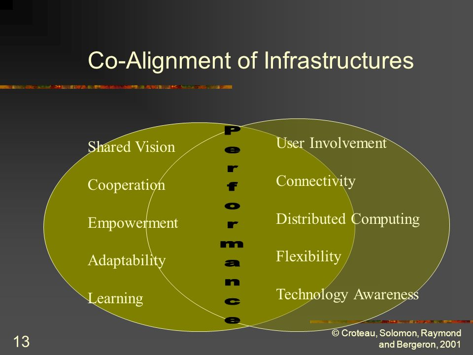 © Croteau, Solomon, Raymond and Bergeron, 2001 13 Shared Vision Cooperation Empowerment Adaptability Learning User Involvement Connectivity Distributed Computing Flexibility Technology Awareness Co-Alignment of Infrastructures