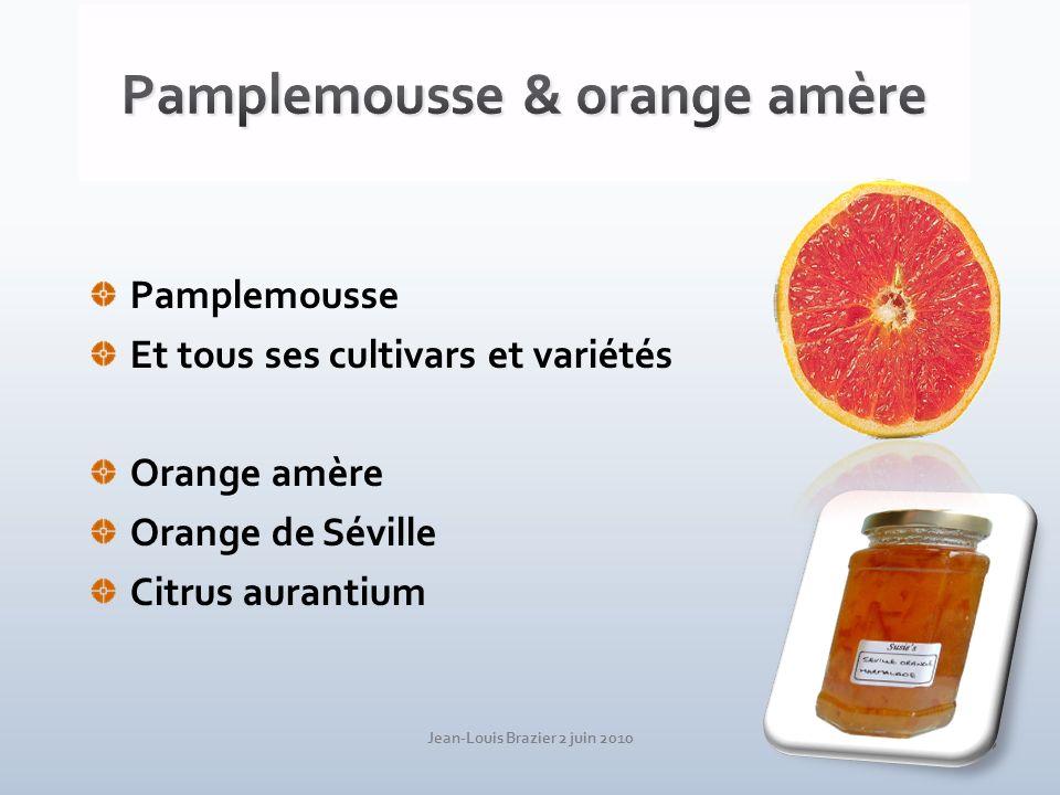 Jean-Louis Brazier 2 juin 2010 15 Pamplemousse Et tous ses cultivars et variétés Orange amère Orange de Séville Citrus aurantium